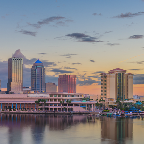 Marketing for Clearwater and Tampa Bay Businesses