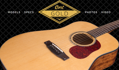 closeup of body of Cort Gold Series acoustic guitar