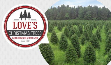 screenshot from Love's Christmas Trees website